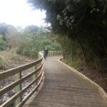 Cox's Bay boardwalk