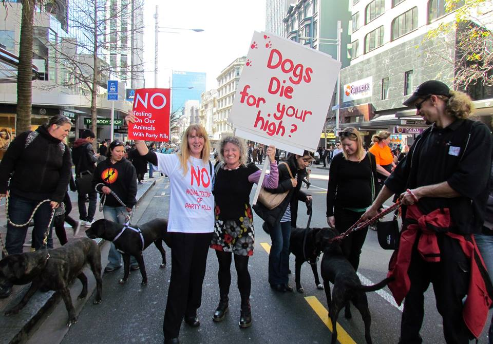 No party pill testing on animals protest