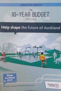 Long Term plan 10 year budget